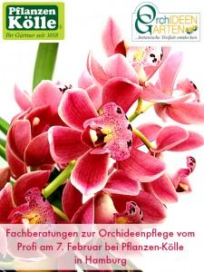 Fachberatung PflanzenKoelle Orchideengarten Karge Febr. 2015