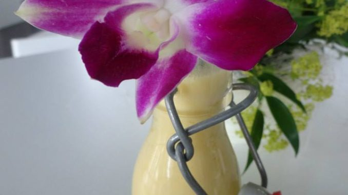 rezepte mit orchideen banane walnuss vanilleeis shake orchideenfans blog. Black Bedroom Furniture Sets. Home Design Ideas