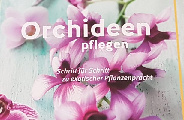 buchrezension orchideen pflegen schritt f r schritt zu exotischer pflanzenpracht. Black Bedroom Furniture Sets. Home Design Ideas