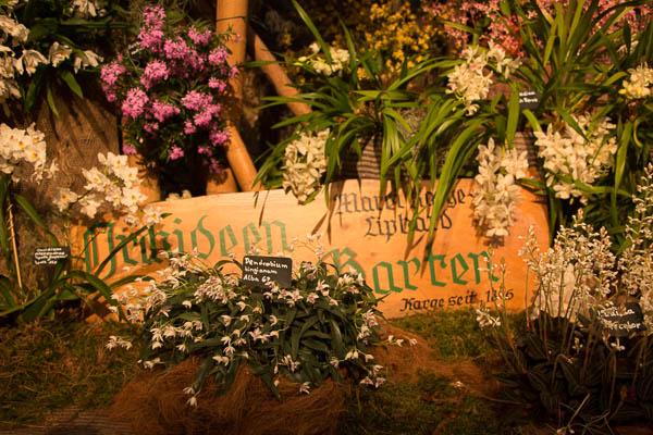 umtopfwoche d nger gratis und rabatt im orchideengarten karge orchideenfans blog. Black Bedroom Furniture Sets. Home Design Ideas